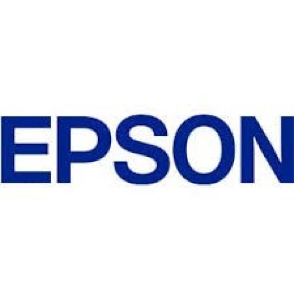 EPSON 252 Std Capacity Durabrite Ultra Magenta T252392