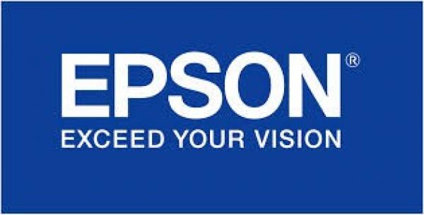 EPSON 252 Std Capacity Durabrite Ultra Yellow T252492