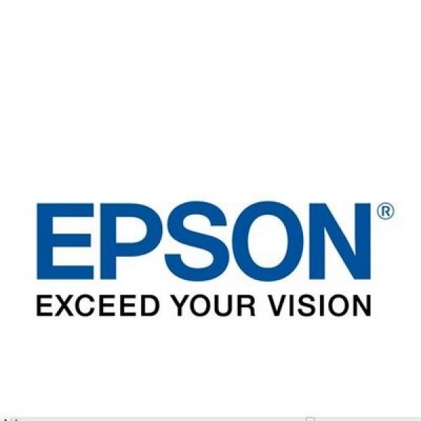 EPSON 252xl High Capacity Durabrite Ultra Cyan T253292