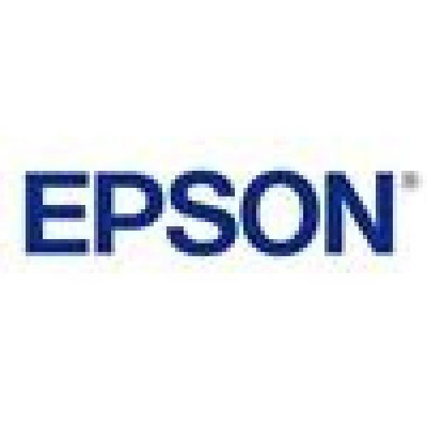 EPSON 786xl High Capacity Durabrite Ultra T787492