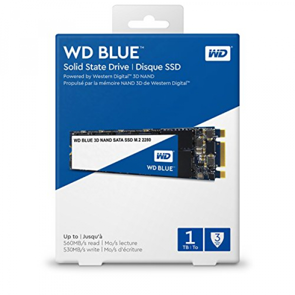 Western Digital Blue 1TB 3D Nand M.2 2280 SSD 560/530 R/W SSD Drives (WDS100T2B0B)