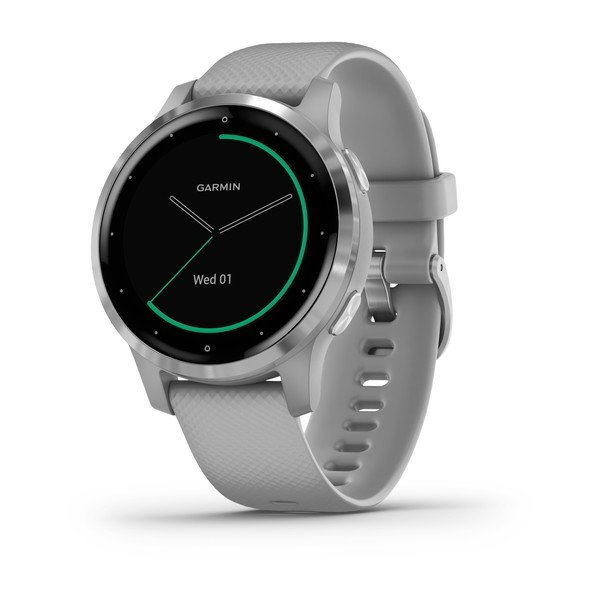 Garmin Vivoactive 4s Powder Gray With Silver Hardware (010-02172-02)
